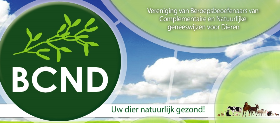 BCND.eu - Members only